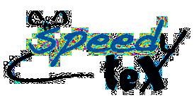 Speedytex logo